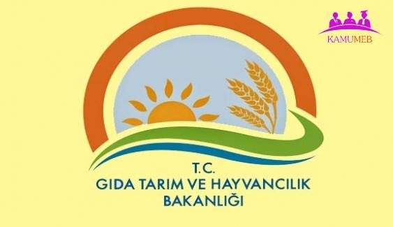 GTHB'na Atama Kararı
