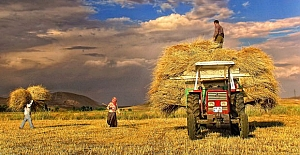 Binlerce Çiftçiye Hazine Arazisi...
