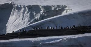 Gizemli Beyaz Kıta Antartika