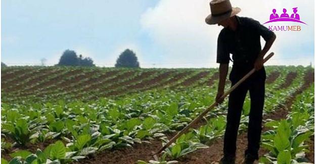 Çiftçilerin Borçlarının Silinmesi ve Yeniden Yapılandırılması Kanun Teklifi