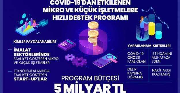 Mikro ve Küçük İşletmelere Hızlı Destek Programı Detayları