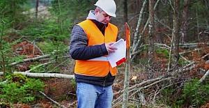 Orman Mühendisi Alınacak