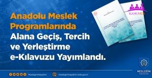 Anadolu Meslek Programlarında Alana Geçiş Tercih ve Yerleştirme e- Kılavuzu